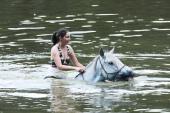 Baden im See mit Pferd