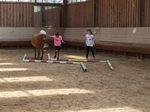 Pferdeparcours